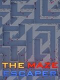 Обложка The Maze Escaper