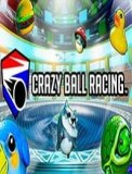 Обложка Crazy Ball Racing